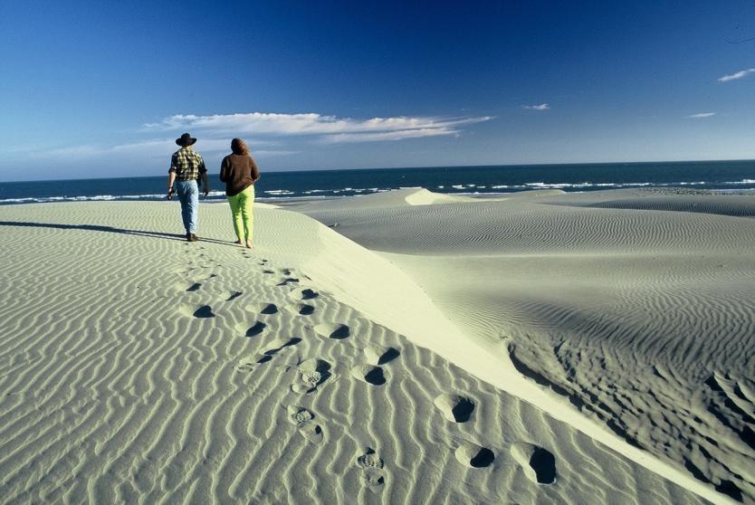 新西兰旅游景点,新西兰景点,新西兰南岛景点,尼尔森景点,尼尔森