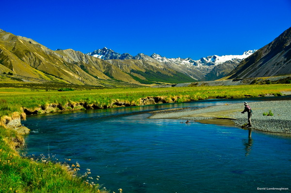 Clear rivers flowing from the Southern Alps create an ideal environment for trophy-sized wild trout..jpg