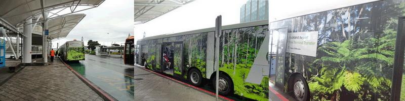 奥克兰国际机场到国内机场免费绿大巴