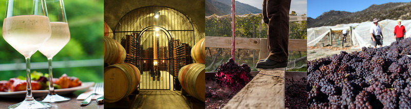 gibbstonvalley-winemaking.jpg