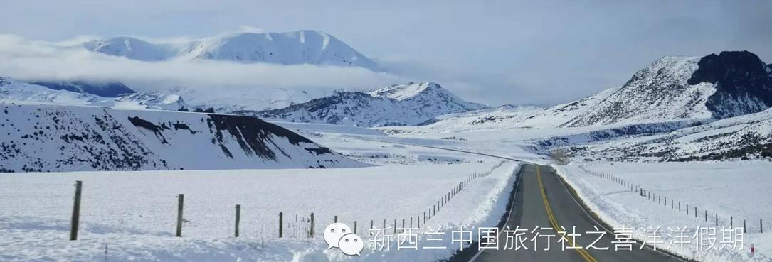 【行摄直播】冬日南岛全景美食6日全记录(一、雪原亚瑟山口)