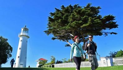 奥克兰周边海岛游:鸟儿乐园Tiritiri Matangi